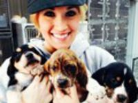 Cute Puppies With Carrie