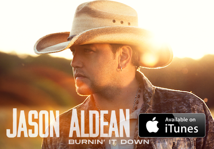 Burnin' It Down iTunes