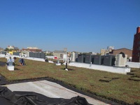 Green Roof being installed at JBJ Soul Homes